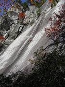 Rock Climbing Photo: Fun in WNC.