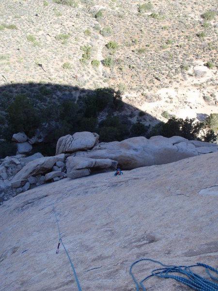 Walk on the Wild Side, Saddle Rocks, Joshua Tree