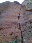 Rock Climbing Photo: Learning to aid up the Intruder in Zion.