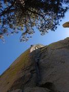 Rock Climbing Photo: Chris 3