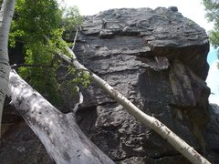 Rock Climbing Photo: This is The Recess as of 7/7/2011. Huge aspen tree...
