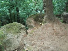 Rock Climbing Photo: bolts on the middle boulder.. the tree to the righ...