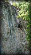 Rock Climbing Photo: M.P. warming up on Larva... ew, disgusting.