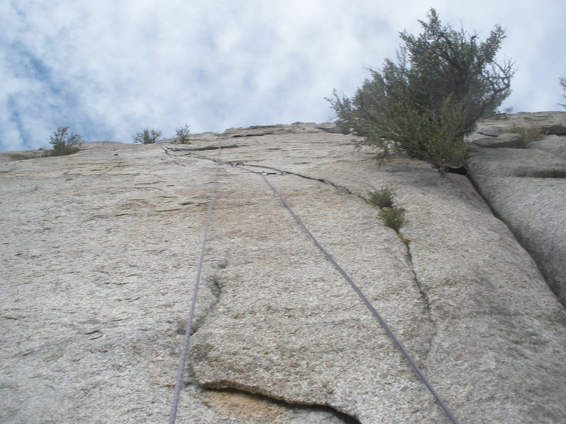 Looking up at my sewing job of the dutchman. The crux comes right up at the tiny shrub at the top of the photo.