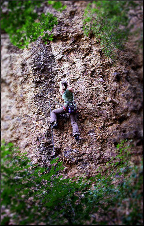 Rock Climbing Photo: Maple Corridor