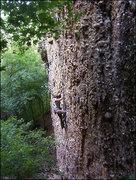 Rock Climbing Photo: Rainmaker