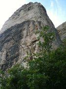 Rock Climbing Photo: Hobble creek canyon the original wall Lots of room...