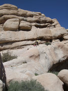 Rock Climbing Photo: Turtle Rock, Real Hidden Valley, Joshua Tree