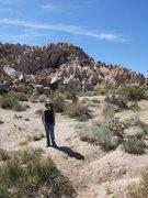 Rock Climbing Photo: Rattlesnack Canyon, Joshua Tree