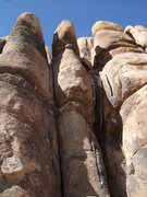 Rock Climbing Photo: Bombay 5.8 and Calcutta 5.7+, The Short Wall, Josh...
