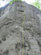 Rock Climbing Photo: Liesel Maurer follows the yellow line back and for...