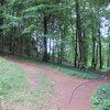 The trail I prefer to get to the Kleine Hexen müssen hexen section.