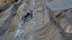 Rock Climbing Photo: Pure Palm