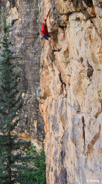 WAY UP IN THE AIR.<br> The upper crux section<br> Raising Awareness (5.12).