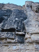 Rock Climbing Photo: Tasty Limestone! This area of the wall is home to ...