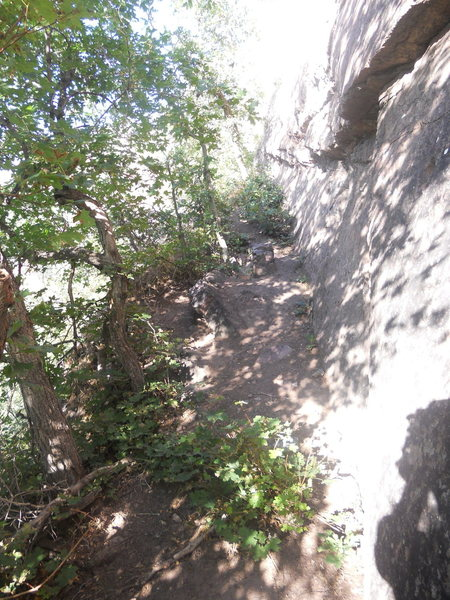 Rock Climbing Photo: A shot of nearly the entire belay area.  Great tre...