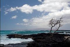 Rock Climbing Photo: Summer surfing on Maui dosn't get much better than...