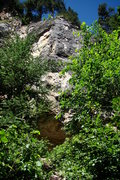 Rock Climbing Photo: Through the trees you can make out Everything's Li...