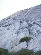 Rock Climbing Photo: Two Hoofers from the ground.  The route ascends un...