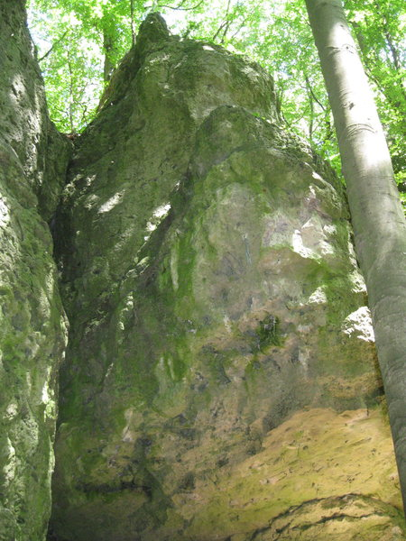 An overhanging wall with the route L'Allpinist (7-) going stright up the middle.