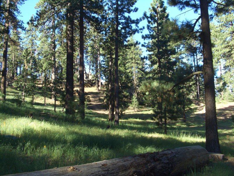 Rock Climbing Photo: Picnic Area, Pine Mountain.