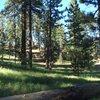 Picnic Area, Pine Mountain.