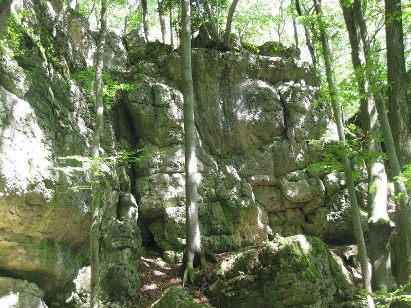 Rock Climbing Photo: Kinda green!