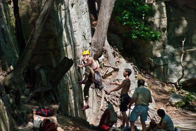 Rock Climbing Photo: start of laurel