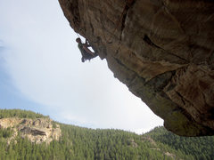 Rock Climbing Photo: Pulling into the crux on the FA of Fool's Gold, 12...