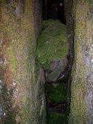 Rock Climbing Photo: Chimney Garden!