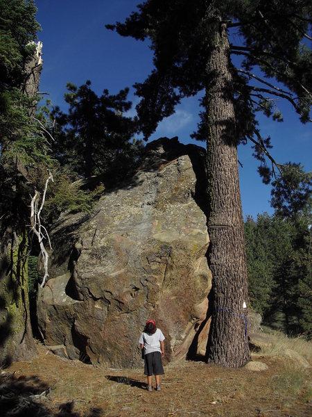 Carlo Rivas checking out The Jewel, Pine Mountain.