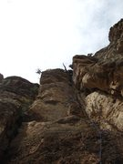 Rock Climbing Photo: Taking in the stellar climbing at Shelf Road at th...