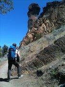 Rock Climbing Photo: Karl scoping the Monkey Face