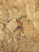 Rock Climbing Photo: Climbing Dog on Crack at The Narrows,