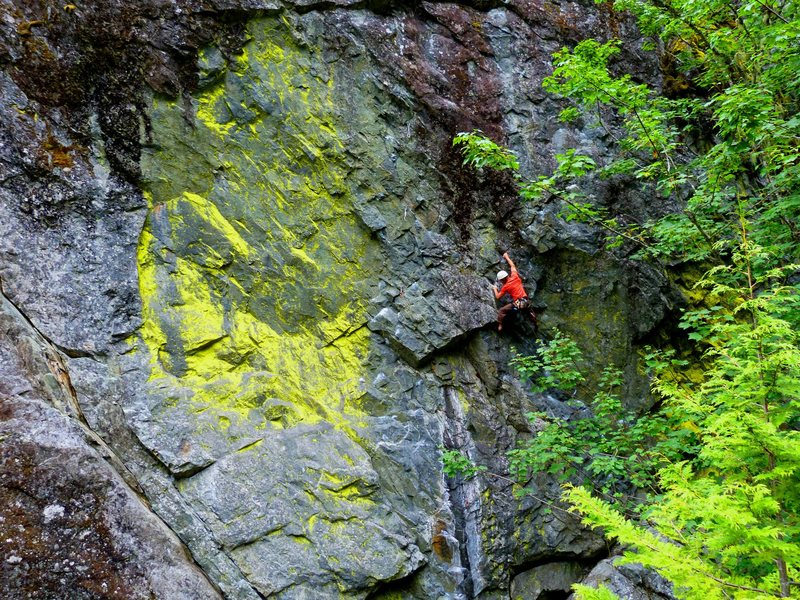 Rock Climbing Photo: Climber on The Mutation