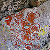 Start with the natural lichen art