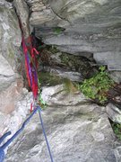 Rock Climbing Photo: Easy Hard and Head Jam Rappel Station