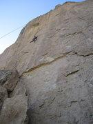 Rock Climbing Photo: Josh TRing Question crack center