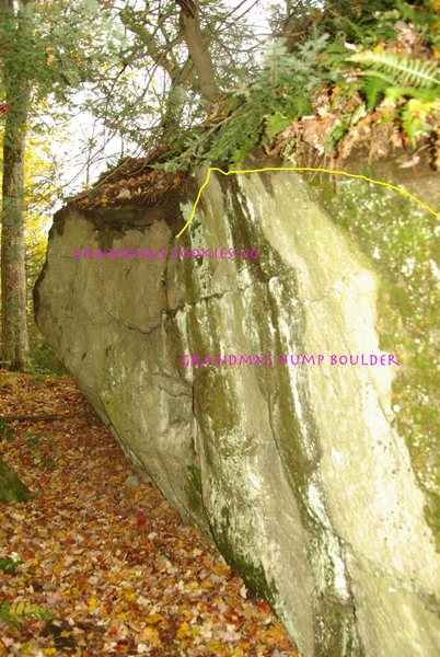 Rock Climbing Photo: Back side of Grandma's hump has a couple cool prob...