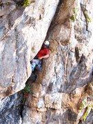 Rock Climbing Photo: Catalonian Crusher reaching for the fat cam.