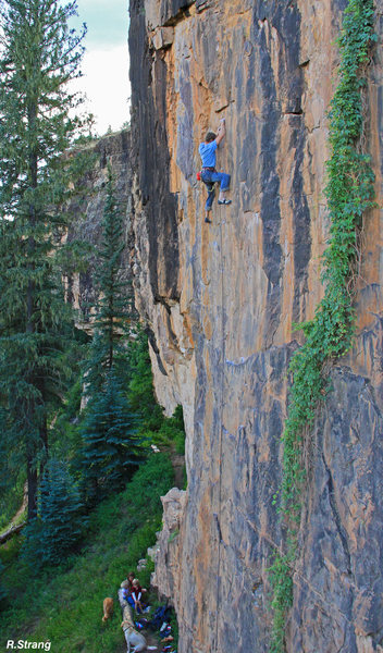 Dad warms up on 5.12 high above the family - Hops bush is to the right.<br> Wild Hops (5.12-).