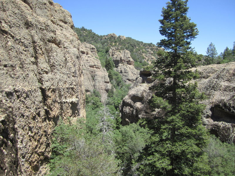 Left fork of Maple Canyon
