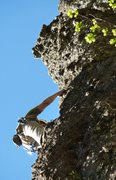 Rock Climbing Photo: Adam Winslow on the FA of Excalibur  Photo: Kyle S...