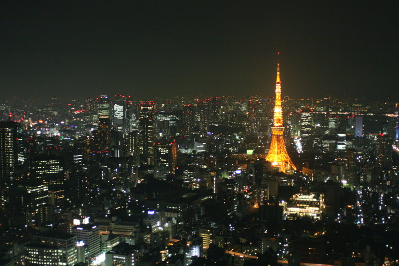 A small portion of the world's biggest city.  Tokyo Tower as viewed from Mori Tower, Roppongi District, Minato.
