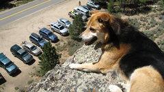 Rock Climbing Photo: Sierra on the Sun Deck.