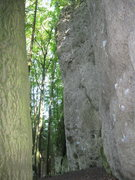 Rock Climbing Photo: Looking from where the path leads into the crag.