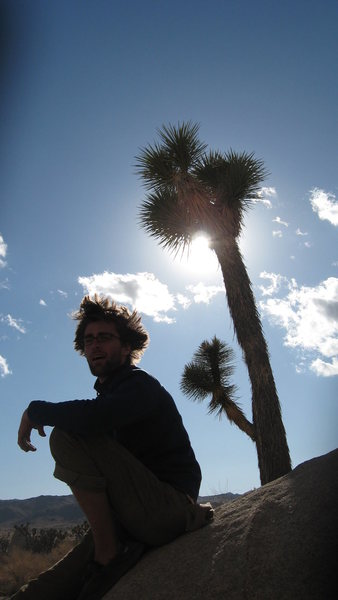 I have been told that I look like a Joshua Tree at times