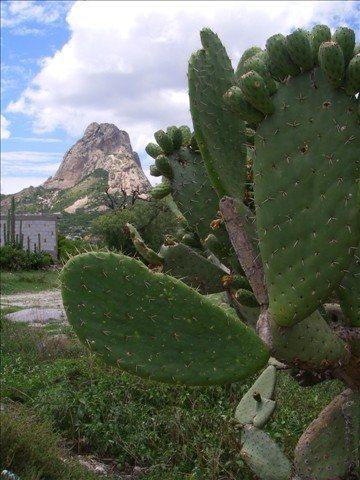 Rock Climbing Photo: Peña de Bernal