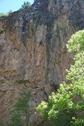 Rock Climbing Photo: Crusin'.