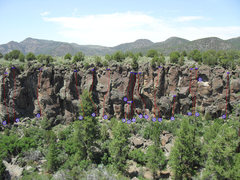 Rock Climbing Photo: Larger view of the wall.  From left to right: 1: L...